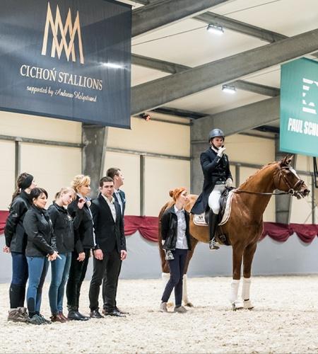 tyszko_cichon_cichon-stallions